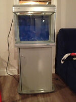 FILTERED Plexi glass FISH TANK and stand