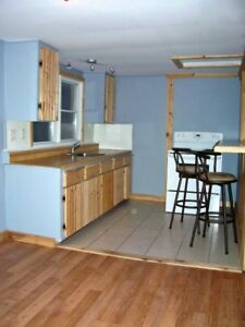 SUMMER LEASE -Ridgetown On- 3 bedroom house - by room or by unit