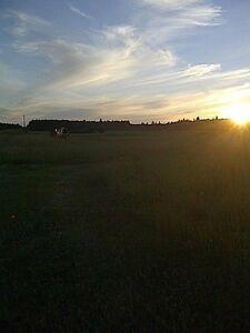 Hunting Land 160 Acres | Kijiji in Saskatchewan  - Buy, Sell & Save