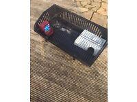 Indoor rabbit hutch / guinea pig cage
