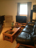 Furnished 1 Bedroom on 37th Street SW. Close to all Amenities