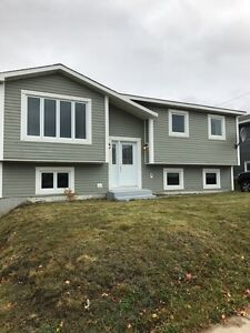 Great Opportunity for Investment/Income Property St. John's Newfoundland image 1