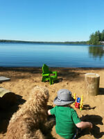 Classic Cottage - Child Friendly Sandy Beach - 2 Wks Left