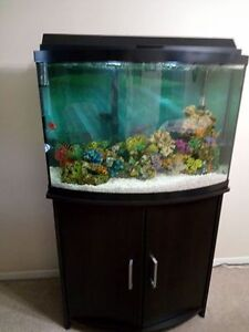 Complete 36 Gallon Tank, Stand and Filter System