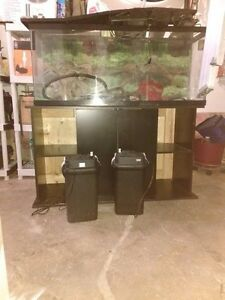 50-75 gallon fish tank & leather couch