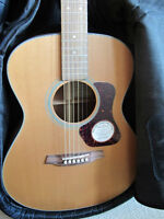 Walden G570 Guitar (new)