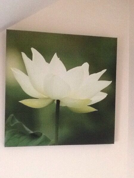 Lightweight Canvas Picture - Beautiful white flower on a green background.