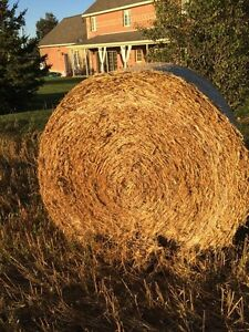 Straw Bales | Kijiji: Free Classifieds in Barrie. Find a ...