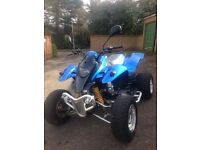 Quadzilla 250e - Road legal quad - Swap 125 Supermoto bike