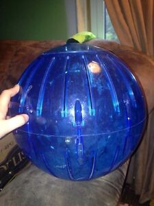 Extra large exercise ball. Belleville Belleville Area image 1