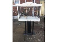 Hand tame budgie with Large cage and accessories etc