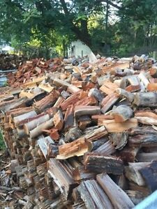 Mixed Hardwood Firewood Logan Village Logan Area Preview