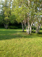 LARGE LOT IN BOUCTOUCHE CLOSE TO BOUCTOUCHE BAY!