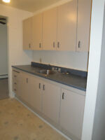 2 Bdrm.Apt-Huge/Renovated/FREE MTH RENT/Incl.Heat/Hot Water
