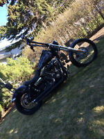 Awesome fun Bike for an Awesome price
