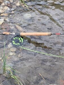 Switch fly rod