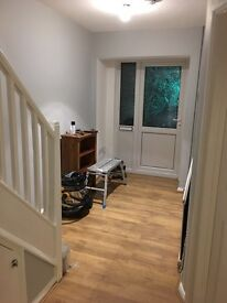 4 double rooms for rent