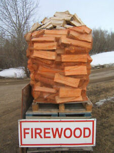 FIREWOOD BIRCH - CALL NOW 780-467-7777 SHERWOOD PARK-EDMONTON