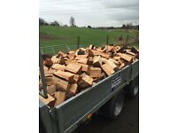 Logs for sale fire wood