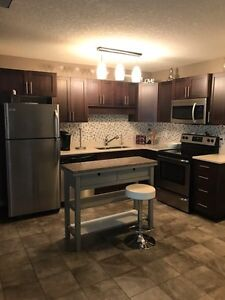 Fully Furnished 2 Bed Condo in Lakeridge for rent with Garage