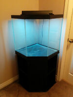 45 gallon corner fish tank with stand