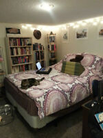One bedroom in two-bedroom basement suite