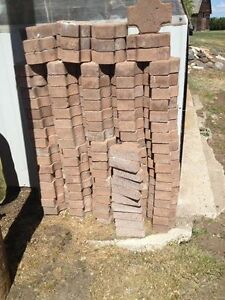 Interlocking paving stones, 97 full stones plus 10 half stones.