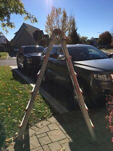 Little Giant ladder Kingston Kingston Area image 1