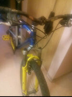 Santecruz (RACEFACE) Men's Mountain Bike