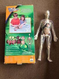 Human anatomy set / Educational toy