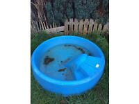 Little tikes paddling pool / duck pond