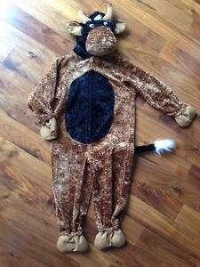 Cow and cat costume