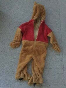 Authentic Disney Winnie The Pooh Costume Size 3-4 years Cambridge Kitchener Area image 2
