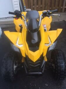 Can am DS 250 for sale (or trade)