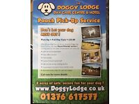 POOCH PICK UP SERVICE - THE DOGGY LODGE-ESSEX
