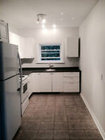 Beautiful 2 bedroom,Refurbished, Steps to Chinatown&Little Italy