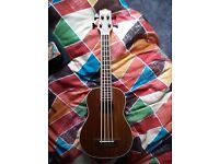 Countryman Ukulele BASS U-Bass (like new, unused)