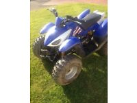 CQR 100cc Off-road Adults Quad bike