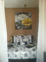FURNISHED Room- East Hill