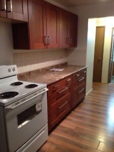 Renovated 1Bdrm Available Jan 22