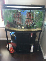 48 Gallon Bow Front Aquarium with everything you need.