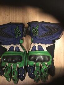 Kawasaki gloves (L)