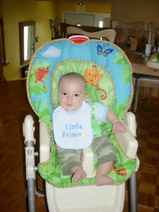 $65.00 High Chair/Chaise Haute & rainforest bouncer /Mode 35$
