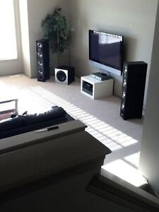 FURNISHED BASEMENT ROOM AND LIVING ROOM FOR RENT