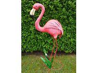 Freddy the Garden Flamingo