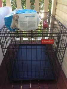 puppy crate - training, cage, kong, pee pads Holland Park Brisbane South West Preview