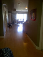 Room for Rent (Sandy Hill) for MAY 1st, 2015