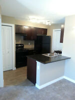 2 Bed/2 Bath Airdrie Creekside Village For Rent