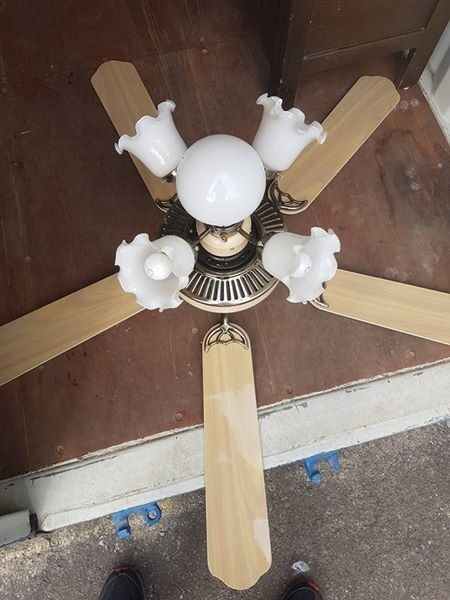 5 LIGHT CEILING FAN FABULOUS CONDITION OAK COLOUR FAN ARMS