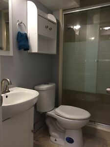 Furnished Suite close to UofA! Edmonton Edmonton Area image 5